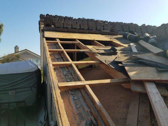 termite damaged wood repair